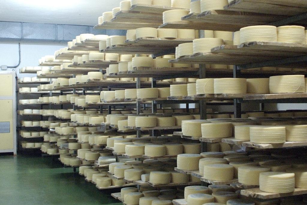 empresa-quesos-gamazo-estanterias
