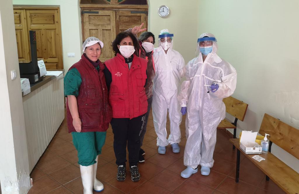 test-coronavirus-mayorga-quesos-gamazo
